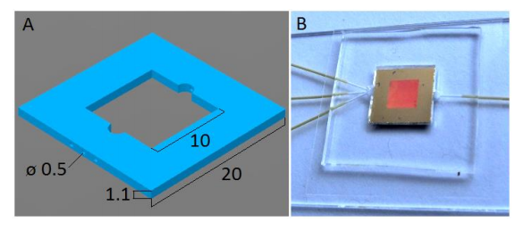 Schematic image of the PDMS chip for microfluidic SERS